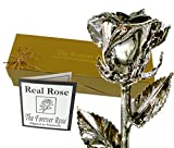Forever Rose Platinum Dipped Real Rose w/Gold Gift Box by The Original USA Brand!