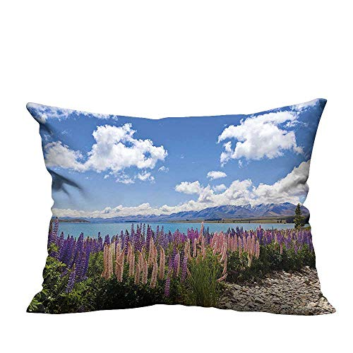 alsohome Home DecorCushion Covers Lup Wildflowers The Shore Cloudy Sky Digital Sky Blue Decorative for Kids Adults 11x19.5 inch(Double-Sided Printing)