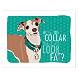 Italian Greyhound Art - Does This Collar Make Me Look Fat - Pop Doggie Dog Art Poster Sign Prints with Funny Sayings - 8 by 10 inches