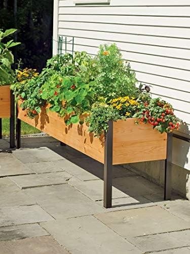 Amazon Com 2 X 8 Raised Garden Bed Elevated Cedar Planter Box Standing Garden Garden Outdoor