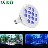 24W E26 Blue LED Grow Lights for Terrestrial Plants, Aquatic Plants Corals-Esbaybulbs For Sale