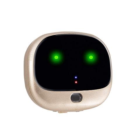 Rastreador de Mascotas, GPS para Mascotas 4G, localizador ...