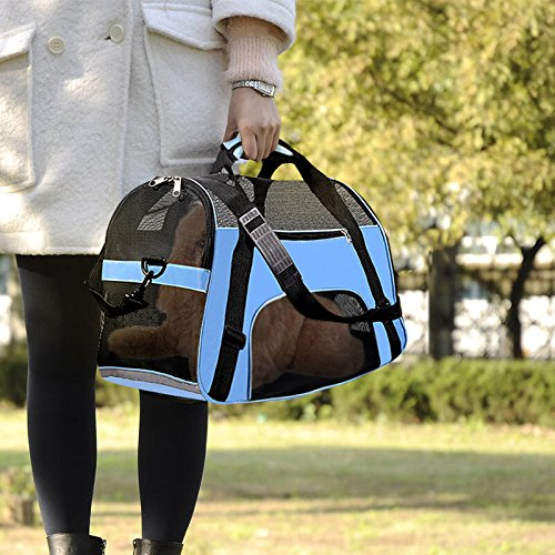 PPOGOO Pet Travel Carriers Soft Sided Portable Bags for Dogs and Cats Airline Approved Dog Carrier 22'' L x 10.2'' W x 13.8'' H Sky Blue by PPOGOO (Image #5)