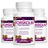 Cheap 100% Pure Forskolin Extract – #1 Weight Loss Supplement – 3 Month Supply – Made in USA Quality Product – Natural Appetite Suppressant & Weight Loss – Order Risk Free! …
