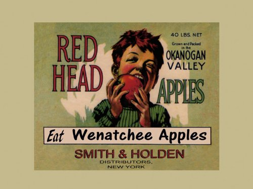 Boy Red Head Eat Wenatchee Apples Okanogan Valley Produce in American USA Fruit Crate Label Vintage Poster Repro 12