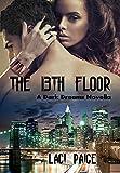 The 13th Floor (Dark Dreams  Book 1)