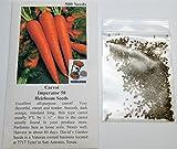 David's Garden Seeds Carrot Imperator 58 SL1871