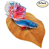 Betta Bed Kit (6 Beds + 2 Suction Cups) by Sungrow - Non-plastic, BPA-Free Hammock - Natural, Organic, Comfortable Rest Area for Fish Aquarium - Improves health by Simulating Betta's Natural Habitat