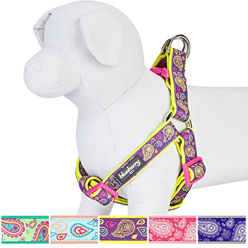 "UPC 724190161012, Blueberry Pet 5 Colors Soft & Comfy Step-in Paisley Flower Print Dog Harness, Chest Girth 26"" - 39"", Dark Orchid, Large, Adjustable Harnesses for Dogs"