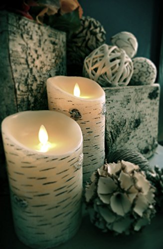 Set Of 2 Luminara Birch Bark Flameless Candles 3 75 215 5 3