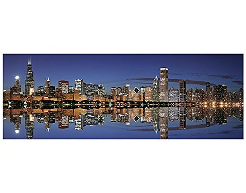 Window Mural Chicago Reflection window sticker window film window tattoo glass sticker window art window décor window decoration Size: 35.4 x 100.4 inches by PPS. Imaging