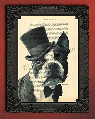 Boston Terrier artwork top hat bow tie poster art print, dressed dog lover gifts portrait wall decor - Boston Terrier Artwork