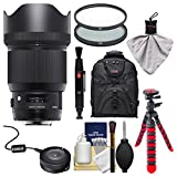 Sigma 85mm f/1.4 ART DG HSM Lens with USB Dock + Backpack + Flex Tripod + 2 (UV/CPL) Filters + Kit for Nikon Digital SLR Cameras