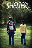 Shelter (After the Flare) (Volume 1)
