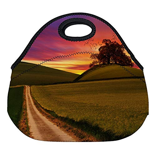 (FGN Photo Of Rough Road In Between Grasses Neoprene Lunch Bag Tote Reusable Insulated Waterproof School Picnic Carrying Lunch Box For Women, Men,)