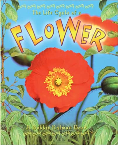 The Life Cycle of a Flower (Life Cycle (Crabtree Prebound))