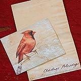 Abbey Press Christmas Cardinal Card -- Set of 18 - Greetings Paper Gift Wrap 54826EBR-ABBEY