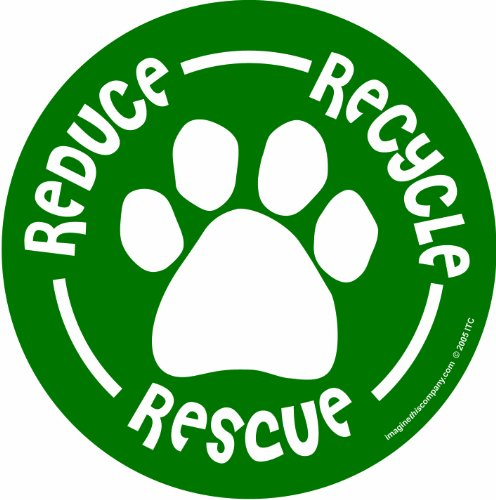 Imagine This 4-3/4-Inch by 4-3/4-Inch Car Magnet Social Issues Circle, Reduce/Recycle/Rescue, Green