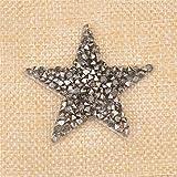 Pukido - 10 parches de diamantes de imitación con diseño de estrellas, termotransferibles, para planchar sobre plata, diseño de corazón, para bricolaje, diseño de diamantes de imitación, color gris estrella de 5 cm