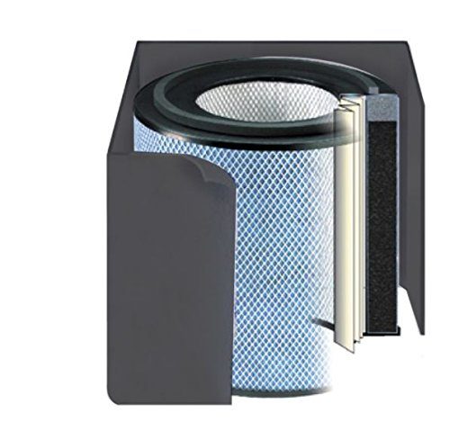 Filter Healthmate Air Austin Replacement - Austin Air Healthmate Jr Black Replacement Filter w/ Prefilter