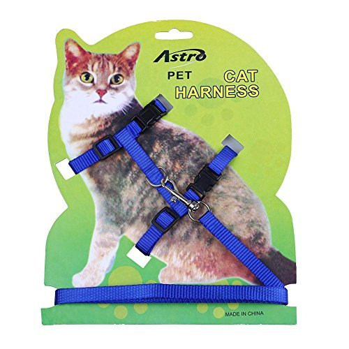 Pecute Pet Cat Lead Leash Halter Harness Kitten Nylon Strap Belt Safety Rope Adjustable Cat Dog Collar - Blue Harness Nylon Cat