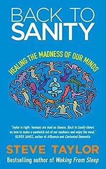 Back to Sanity by [Taylor, Steve]