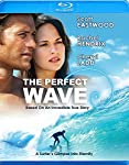 Cover Image for 'Perfect Wave, The'