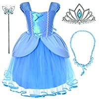Party Chili Princess Fairy Costume Toddler Girls Birthday Dress Up with Tiara (3T 4T)