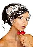 Leslie Li Flower & Crystal Bridal Birdcage Veil One Size Ivory 27-70926-F19