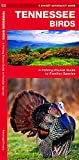 Tennessee Birds: A Folding Pocket Guide to Familiar Species (A Pocket Naturalist Guide)