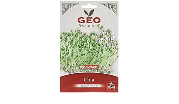 Geo Chia Semillas para germinar, Marrón, 12.7x0.7x20 cm: Amazon.es ...
