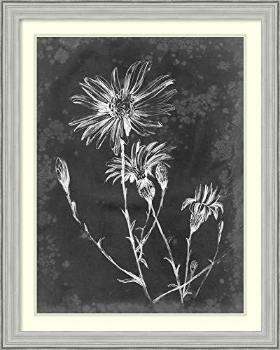 Framed Wall Art Print Slate Floral III by Ethan Harper 26.75 x 33.38