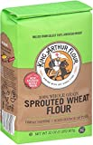King Arthur Flour Sprouted Wheat Flour, 2 Pound