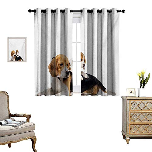 Beagle Blackout Window Curtain Cute Family with Mother and Baby Puppy Domestic Fur Animal Photography Customized Curtains W55 x L39 Pale Caramel White Black