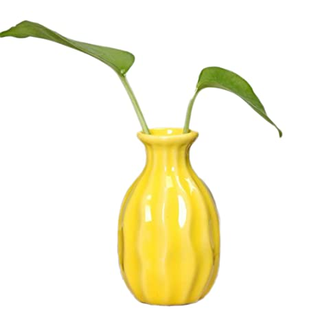 Jungen Ceramic Vase Flower Pot Plant Container For Home Office