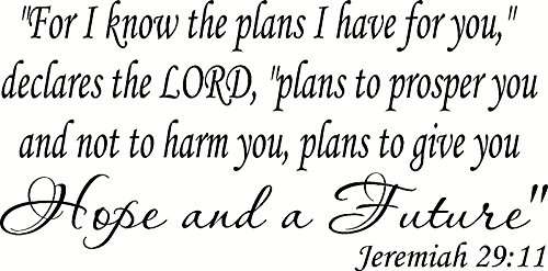 Jeremiah 29 Inspirational Christian Scripture product image