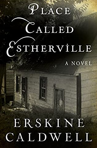 book cover of A Place Called Estherville