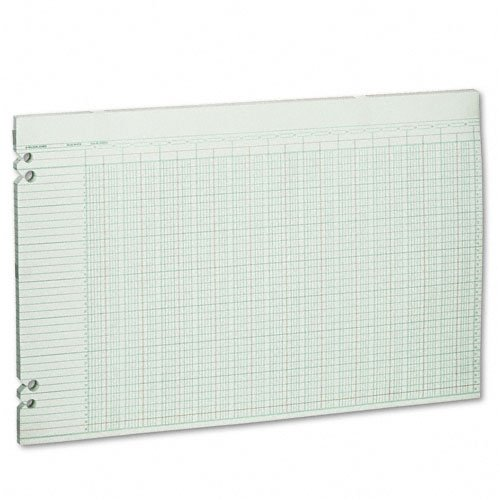 Wilson Jones : Accounting Sheets, 36 Columns, 11 x 17, 100 Loose Sheets/pack, GN -:- Sold as 2 Packs of - 100 - / - Total of 200 Each