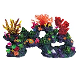 Underwater Treasures 23890 Florida Coral Reef