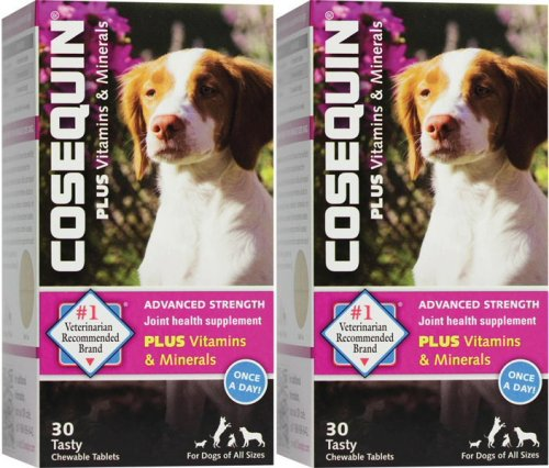 New Cosequin (Cosequin Advanced Strength with vitamins & minerals 30 count x 2 PK)