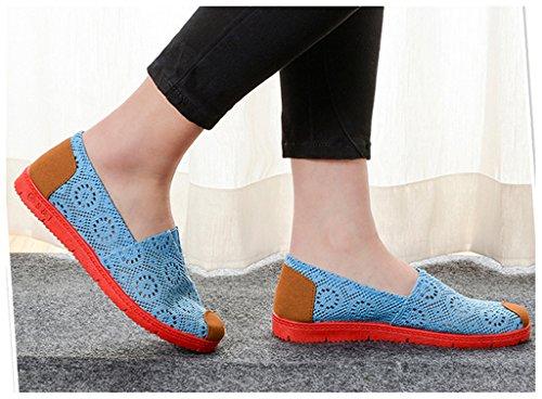 NEWZCERS La flor ocasional de la lona de la manera bombea los zapatos de los planos para las mujeres Azul