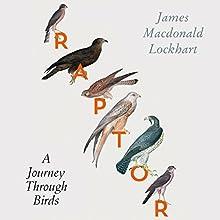 Raptor: A Journey Through Birds Audiobook by James Macdonald Lockhart Narrated by Dugald-Bruce Lockhart
