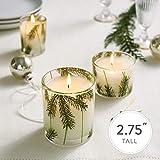 Thymes Votive Candle - 2 Oz - Frasier Fir
