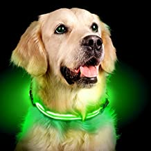 Ultimate LED Dog Collar – USB Rechargeable, cable included, 5 awesome colors. Ultra Bright, Durable, Made to last. Make your dog more visible at night (Large, Lime)