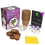Vegetable Garden Growing Kit Gift Box - Everything You Need to Grow 8 Unusual Veggies from a Seed | Purple Carrot, Rainbow Chard, Detroit Red Beet, Marvel of 4 Seasons Lettuce & Much More!