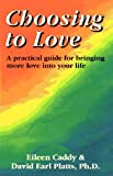 img - for Choosing to Love: A Practical Guide for Bringing More Love into Your Life book / textbook / text book