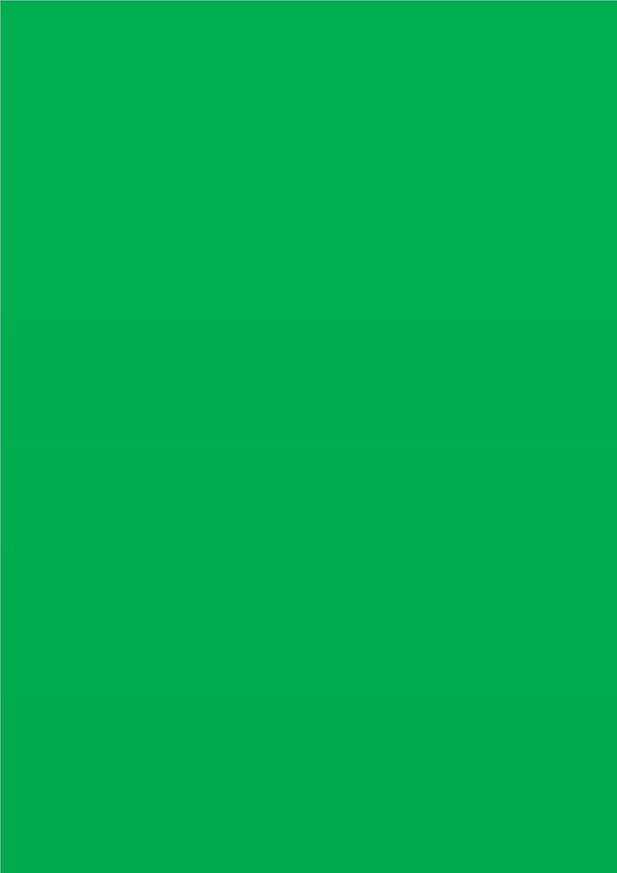 Casa di carta e carta di carta colorata, A3297x 420mm, 220g/mq, colore: rosso (Confezione da 50fogli) House of Card & Paper A3R22050