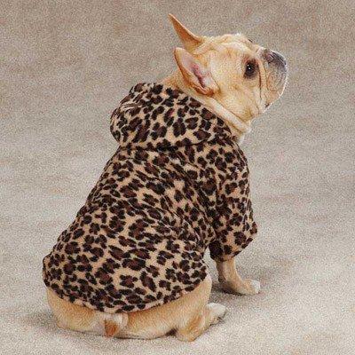 [Casual Canine Animal Print Cuddler, Large, Leopard] (Casual Canine Sweatshirt)