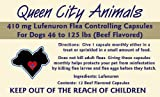 Queen City Animals Flea Controlling Capsules For Large Dogs 46 – 125 Pounds. 12 Monthly Beef Flavored 410 mg Lufenuron Capsules Controls Flea Eggs And Larvae For Your Dog for a Full Year. The Same Active Ingredient As The Major National Brand. (Not For Little Dogs), My Pet Supplies