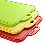 Zanmini Chopping Board Cutting Board Meat Fruit Set of 3 Food Grade PP Non-slip Feet Kitchen Cutting Boards with Hanging Hole and Stand,Dishwasher Safe Good Kitchen Tools for Chef (RED, GREEN, YELLOW)